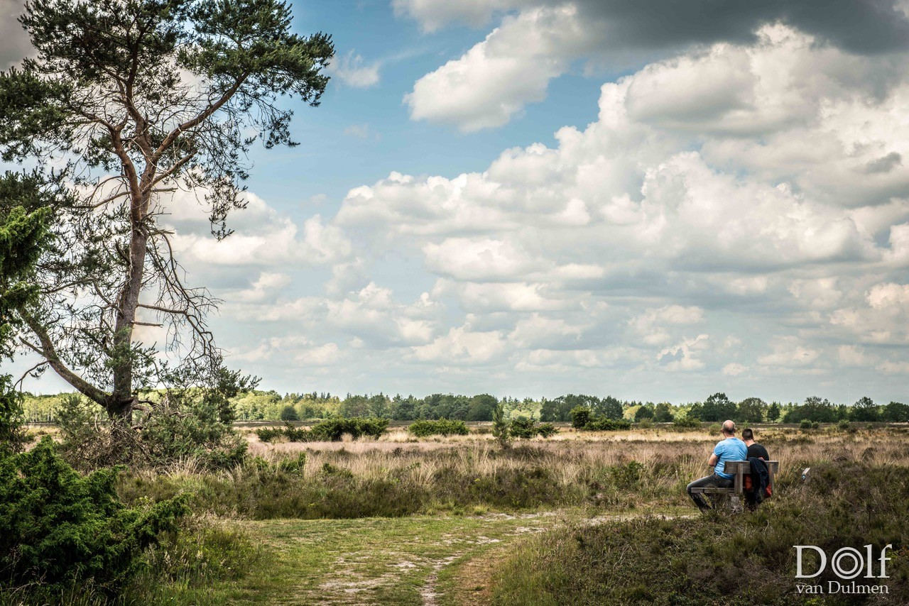 * FAMILY SHOOT *    Prachtige omgeving (Drenthe) en een geweldig stel mensen! Dank je wel familie Rietveld!!