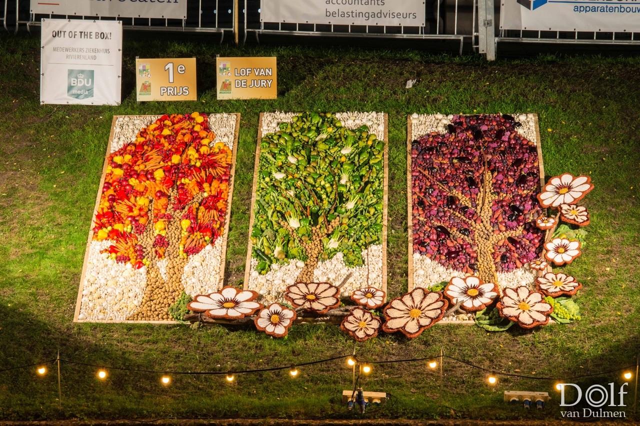 * PARELTJES AAN DE GRACHT 2019 * Fruitmozaieken aan de Tielse stadsgracht.